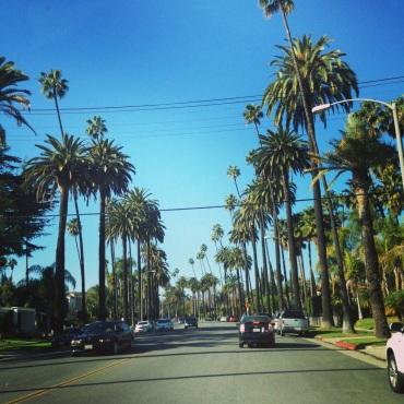 Annys Adventures - Rodeo Drive, LA